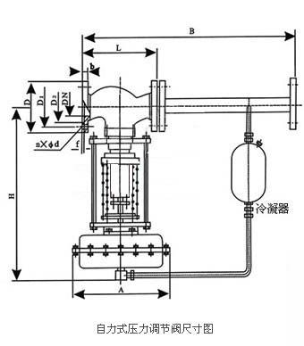 自力式压力调节阀_尺寸图